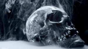 skulls-death_00242954.jpg